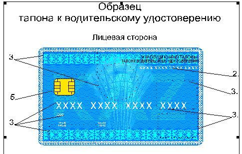 талон к водительскому удостоверению образец